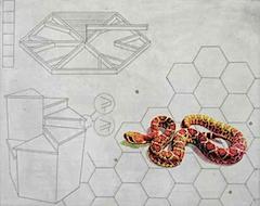 snakerecroomprint.jpg